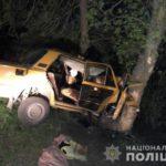 В Житомирской области легковушка влетела в дерево: двое погибших